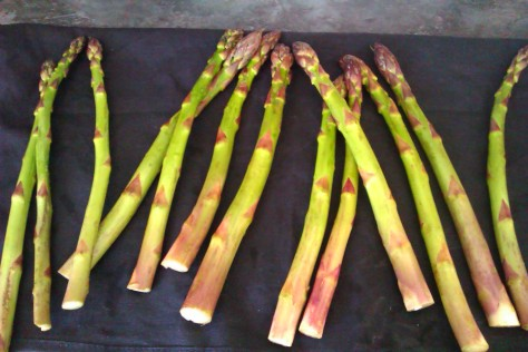asparagus on the foreman grill