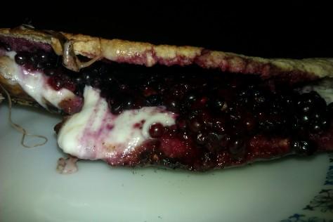 melting mozzarella and blackberry