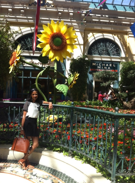 bellagio garden las vegas