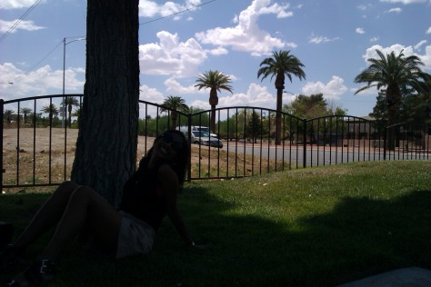 shade under a tree las vegas