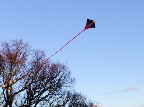 kite 55