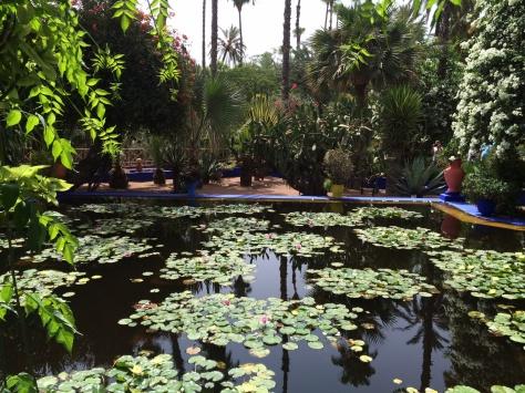 Majorelle Gardens 2