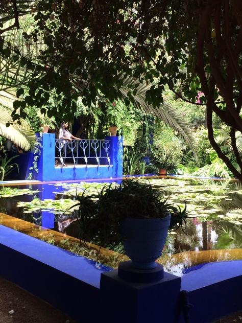 Majorelle Gardens 6