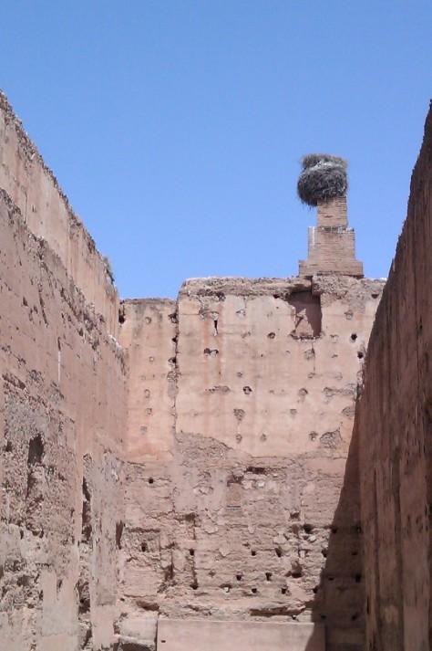el badi palace stork nest