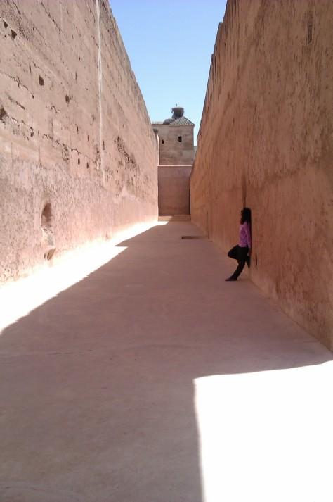 el badi palace 5